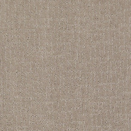 After Hours Ashwood Carpet, 100% Stainmaster Nylon