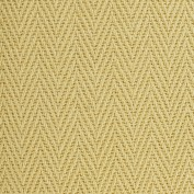 Astute Friendly Tan Carpet, 100% Sisal