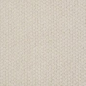 Cathedral Hill Brushed Ivory Carpet, 100% R2X Nylon