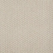 Cathedral Hill Chic Cream Carpet, 100% R2X Nylon