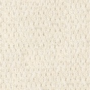 Natural Impressions I Arctic Ivory Carpet, 100% Olefin