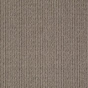 By Chance Simply Taupe Carpet, 100% Anso Nylon