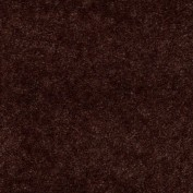 Hawkeye II Buckeye Brown Carpet, 100% Nylon