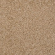 Hawkeye II Fawns Leap Carpet, 100% Nylon