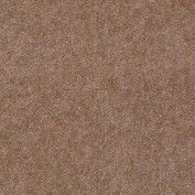 Hawkeye II Twig Carpet, 100% Nylon