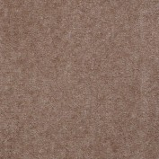Hawkeye II Warm Mink Carpet, 100% Nylon