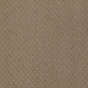 Mar Vista Mystic Brown Carpet, 100% R2X Nylon