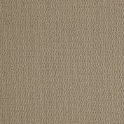 National Event Perfect Taupe Carpet, 100% PET Polyester