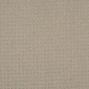 Style Me Perfect Taupe Carpet, 100% PET Polyester
